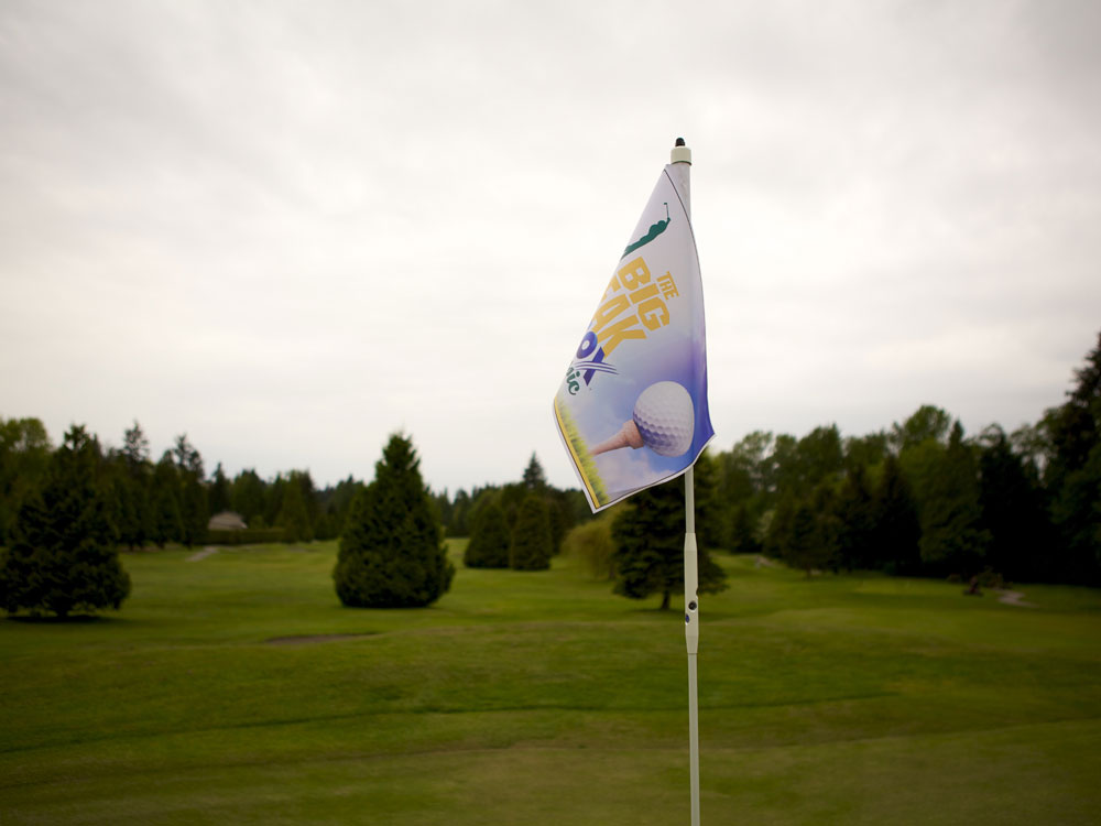 Pin Flags.